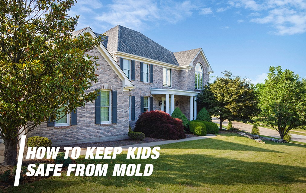 How To Keep Kids Safe From Mold